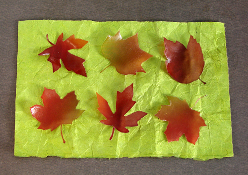 Fall Leaves Soap Kit
