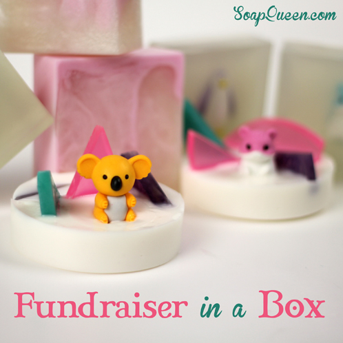 Fundraiser Kit Craft Show Tips Galore Soap Queen