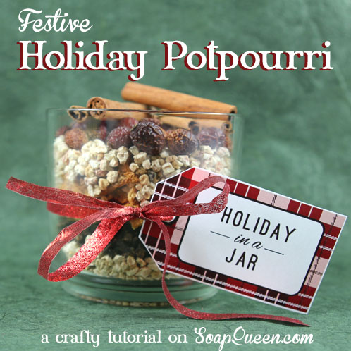 Learn how to make this adorable Holiday Potpourri, complete with free gift tags!